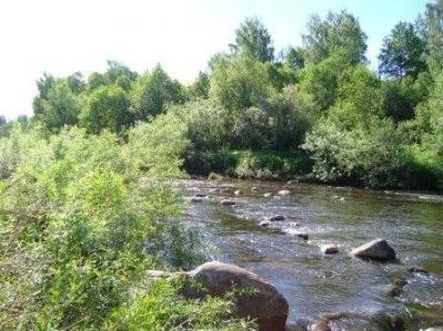 Река Явонь
