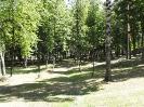 Летний парк 2